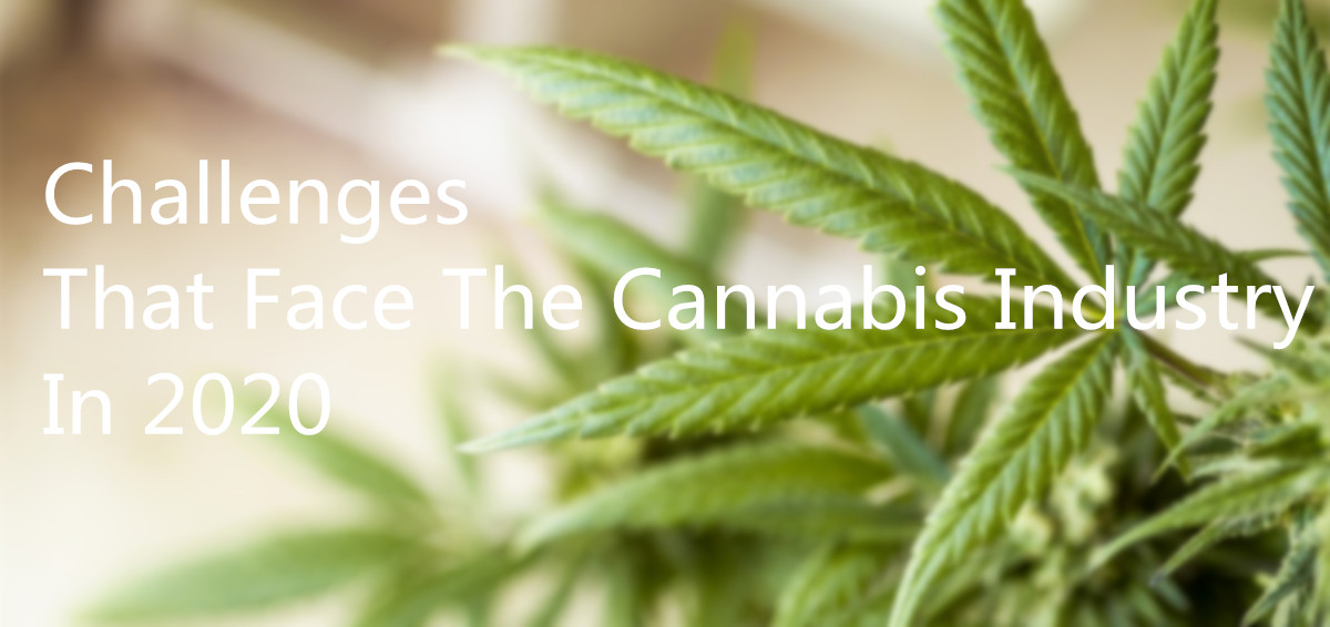 Challenges That Face The Cannabis Industry In 2020