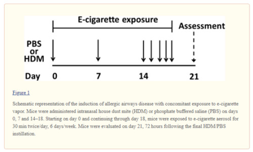effect of e-cigarette on allergic airway disease01