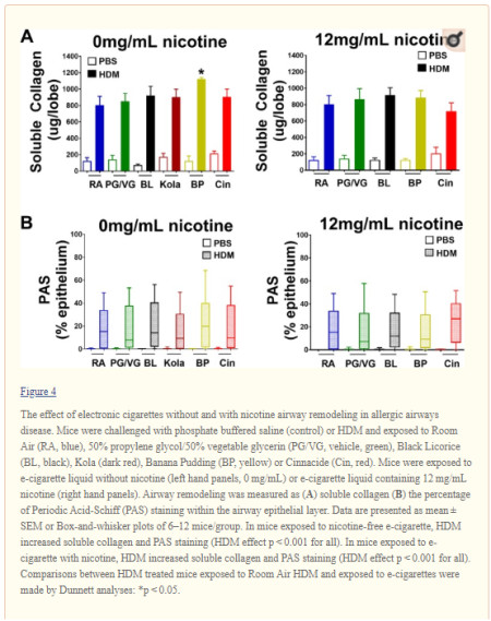 effect of e-cigarette on allergic airway disease05
